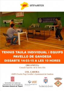 Cartell Tennis Taula 2015
